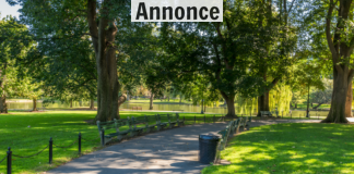 Park stemning